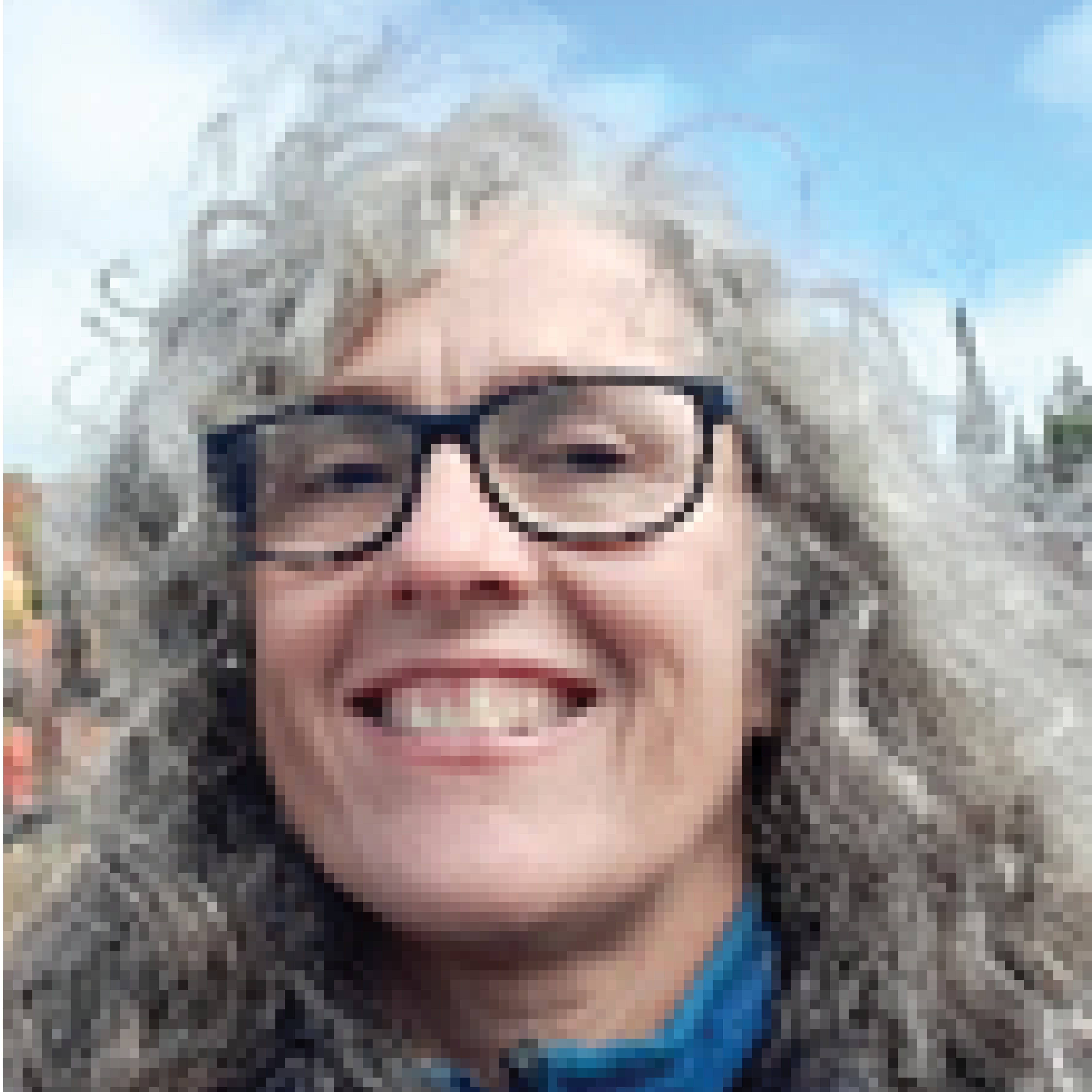 Sheila Wilmot web